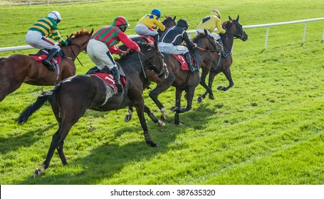Race horses sprinting words the finish line - Shutterstock ID 387635320