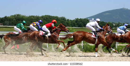 The race for the prize of the Caucasus,Russia.