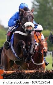 Racehorse (Aardwolf) ridden by Richard Johnson jumps the last hurdle at Market Rasen Races : Market Rasen Racecourse, Lincs, UK : 11 May 2018 : Pic Mick Atkins