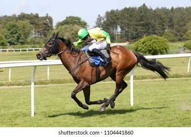 Racehorse Baron Von Chill ridden by Harry Skelton gallops to the line before winning at Market Rasen Races : Market Rasen Racecourse, Lincolnshire, UK : 20 May 2018 : Pic Mick Atkins