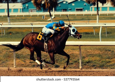 Racehorse with Jockey
