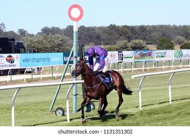 Racehorse Longhouse Sale ridden by Harry Skelton winning the NH Flat Race at Market Rasen Races : Market Rasen Racecourse, Lincolnshire, UK : 22 June 2018