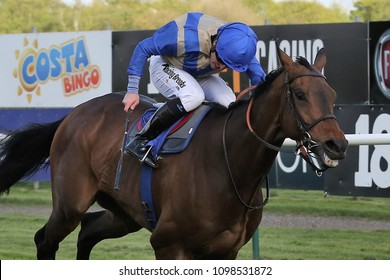 Racehorse (Slunovrat) under driving ride from jockey winning a flat race at Nottingham Races ; Colwick Park, Nottingham Racecourse, UK :  1 May 2018 : Pic Mick Atkins