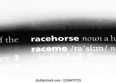 racehorse word in a dictionary. racehorse concept.