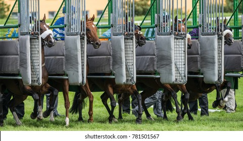 Racehorses galloping out of the start gate