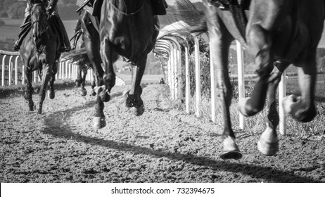 Racehorses on the gallops at Lambourn