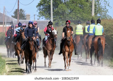 Racehorses with Work Riders going to and from Morning Gallops : Great Habton, Malton, North Yorkshire, UK : 9 June 2015