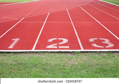 racetrack in stadium