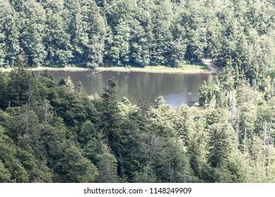 Rachelsee lake bellow Groseer Rachel hill with forest aroud from Seeblick near Waldschmidzhaus hut in Bayerischer Wald mountains in Germany
