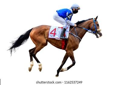 Racing, background, horses, racetrack isolated on white background, bw