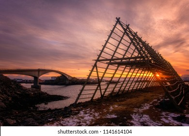 A rack for drying cod stockfish during beautiful sunset with colorful sky in Henningsvaer, a very pleasant village in Lofoten, Norway.