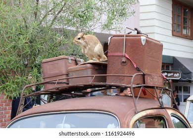 A rack with luggage and a stuffed animal atop a Vintage Volkswagon in Carmel, California United States of America taken on August 21, 2018