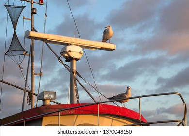 Radar system of a boat with sitting seagulls on it
