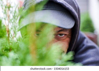 Radauti, Romania - 09 14 2019: Stalker  watching behind the bushes