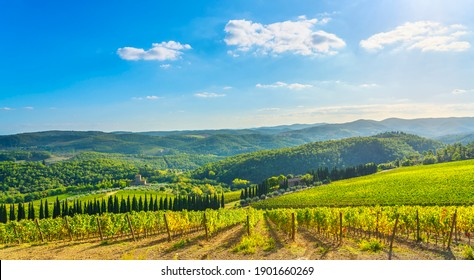 Radda in Chianti vineyard and panorama in autumn. Tuscany, Italy, Europe.