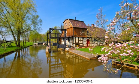 Raddusch Mill, Spree Forest in spring, Brandenburg