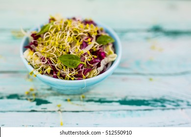 Radicchio salad with fresh broccoli sprouts. Healthy diet and vegetarian food.