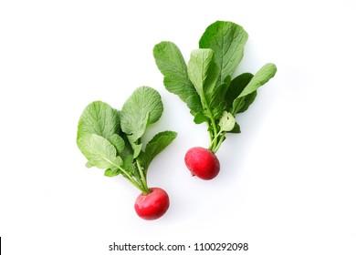 Radish food image