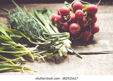 Radish, green onions, fennel and spring lettuce/toned photo