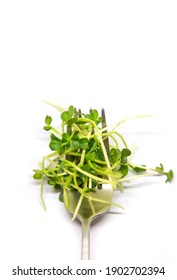 Radish microgreen on a white background isolate. Selective focus. nature.