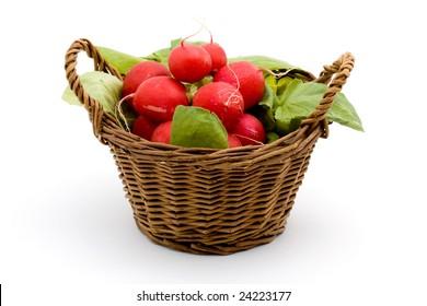 radish vegetable studio isolated over white