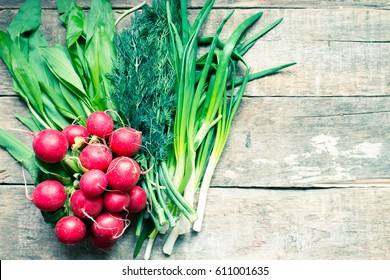 Radish, wild garlic, fennel and green onions/toned photo