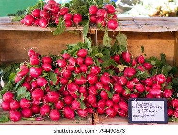 Radishes for sale at a local farmers market in St. Pete Beach, Florida