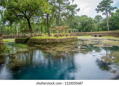 Radium Springs Natural Park