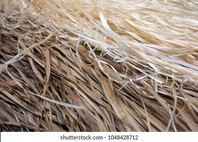 Raffia Pacific Islands skirt straw background. Abstract, background and texture