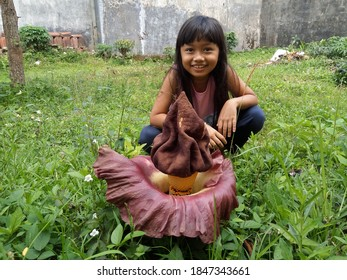 Rafflesia, a rare flower with a little girl