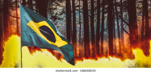 Raging pinewood forest fire with Brazilian flag on foreground - Amazon burning concept. Selective focus on background