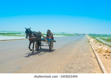 Horse Pulling Cart Images, Stock Photos & Vectors   Shutterstock