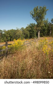 Rail fence and goldenrod at Gettysburg battlefield