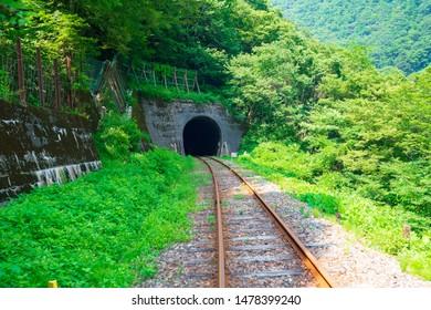 Rail Mountain Bike Gattango Tunnel Scenery (Gorge Course)