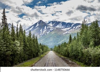 Railroad in the alaskan wilderness