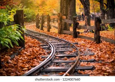 Railroad crossing around Nami Island For tourist service at Nami Island, Korea