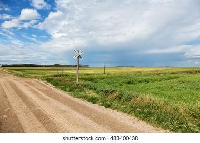 Railroad crossing in rural North Dakota on a summer day.