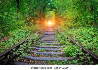 Railroad in forest near Klenav town, Ukraine