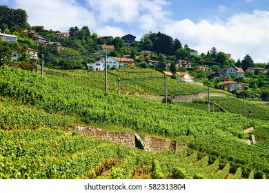 Railroad at Lavaux Vineyard Terraces hiking trail, Lavaux-Oron district in Switzerland
