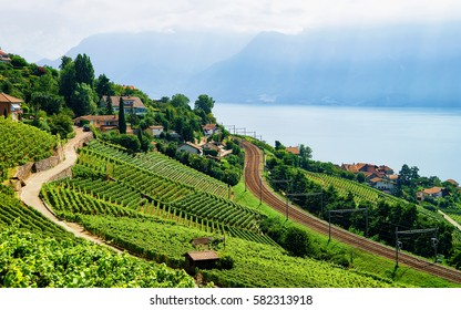 Railroad at Lavaux Vineyard Terraces hiking trail, Lake Geneva and Swiss mountains, Lavaux-Oron district in Switzerland