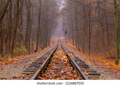 Railroad single track through the woods in autumn. Fall landscape. red semaphore signal.