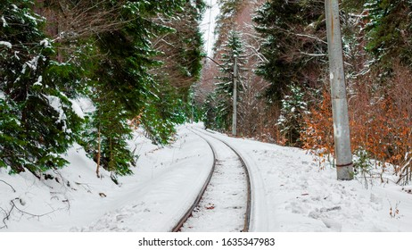 Railroad track into the woods covered with snow, railway track passing through the winter forest.
