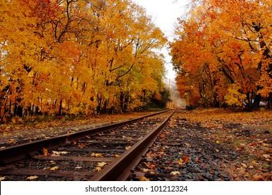 Railroad tracks in autumn in Hainesport, NJ