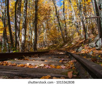 Railroad tracks covered in fall leaves off of the Blue Ridge Parkway in Virginia