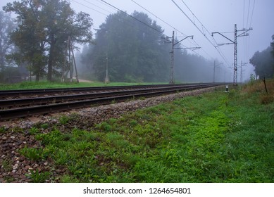 railroad tracks in misty forest with green foliage and perspective