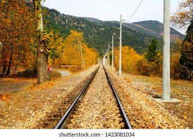 Railroad tracks on mountainside landscape in between colorful autumn leaves and trees in forest of Mersin, Turkey