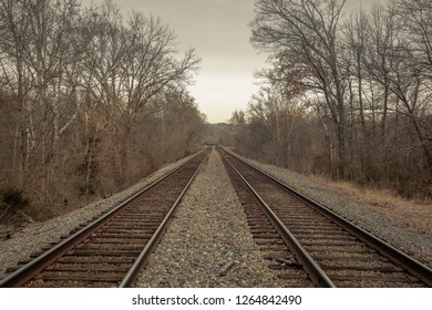 Railroad tracks receding into the distance between bare trees on an overcast day