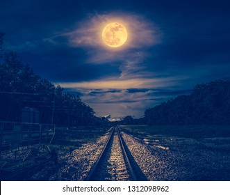 Railroad tracks through the woods at night. Beautiful dark sky and full moon above silhouettes of trees and railway. Serenity nature background. Outdoor at nighttime. The moon taken with my own camera