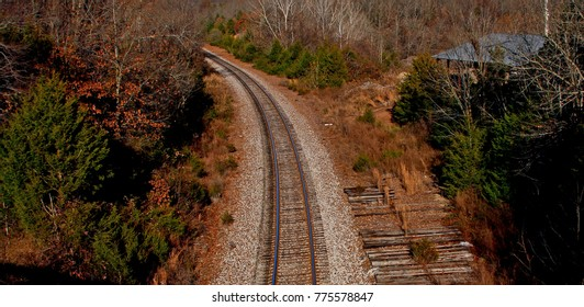 Railroad Tracks through a woods, spaced between trees, curves off into the distance.