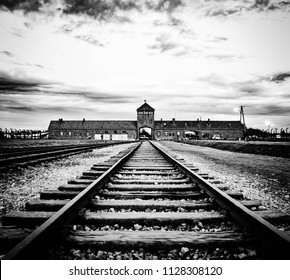Rails of Auschwitz, Birkenau